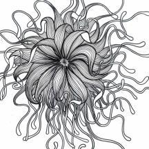 """""""Fleur aquatique"""", Alice Heit 2004."""