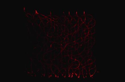 3) tissus lumineux 9 -alice heit-