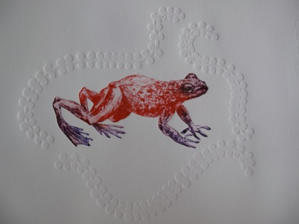 Grande grenouille, pointe sèche et gaufrrage, Alice Heit 2017.