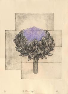 """""""Le lotus du Trégor"""", pointe sèche, Alice Heit 2016."""