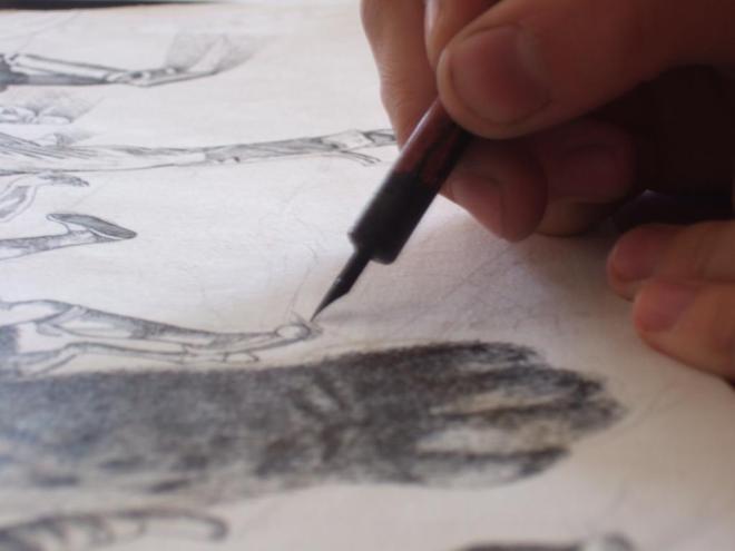 dessin à la plume et à l'encre noire, alice heit