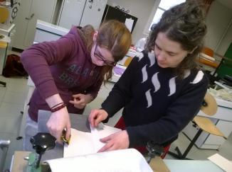 Atelier de gravure avec les étudiants du lycée de Suscinio, Morlaix. Mars 2017.