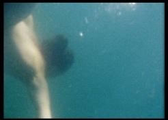 eaux profondes 9